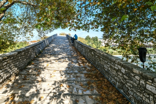The Historical Bridge of Arta